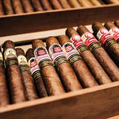An Introduction to Cigars Today