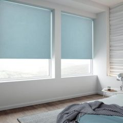 Blinds for Your Windows